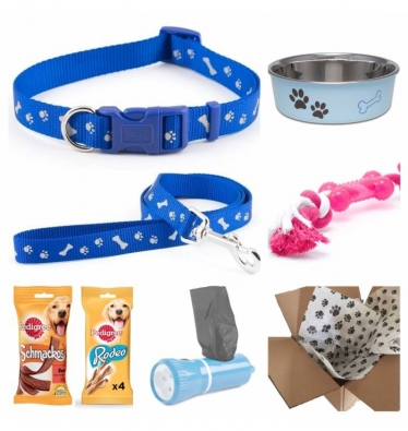Dog Gift Set - Boy
