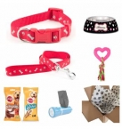 Dog Gift Set - Girl
