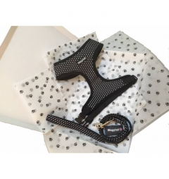 Wagytail Black Polka Dot Harness and Lead Gift Box Set