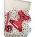 Wagytail Red Polka Dot Harness and Lead Gift Box Set