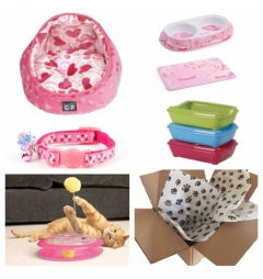 Kitten Luxury Starter Kit for Girl - Hearts