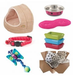 Kitten Luxury Starter Kit for Girl - Corduroy