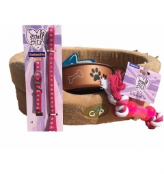 Puppy Starter Kit for Girl - Classic Cairo