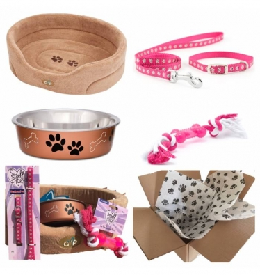 Puppy Starter Kit For Girl Classic Cairo