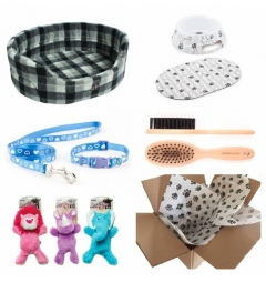 Puppy Luxury Starter Kit for Boy - Grey Check