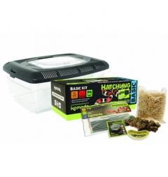 Komodo Complete Basic Snake Hatchling Start-up Kit