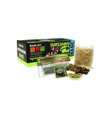 Komodo Basic Snake Hatchling Start-up Kit