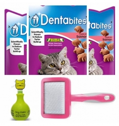 Cat Dental and Grooming Bundle