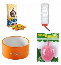 Guinea Pig Bowl and Treats Bundle/Gift Set