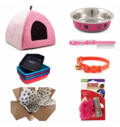 Kitten Starter Kit for Girl - Classic Pink