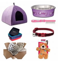 Kitten Starter Kit for Girl - Classic Purple